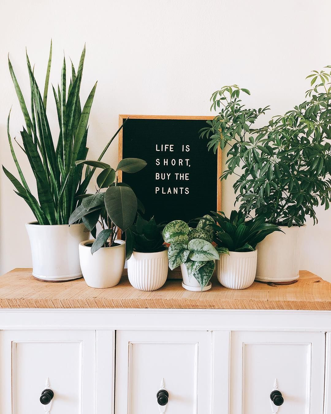 Letter boards have been taking over Instagram and are ...