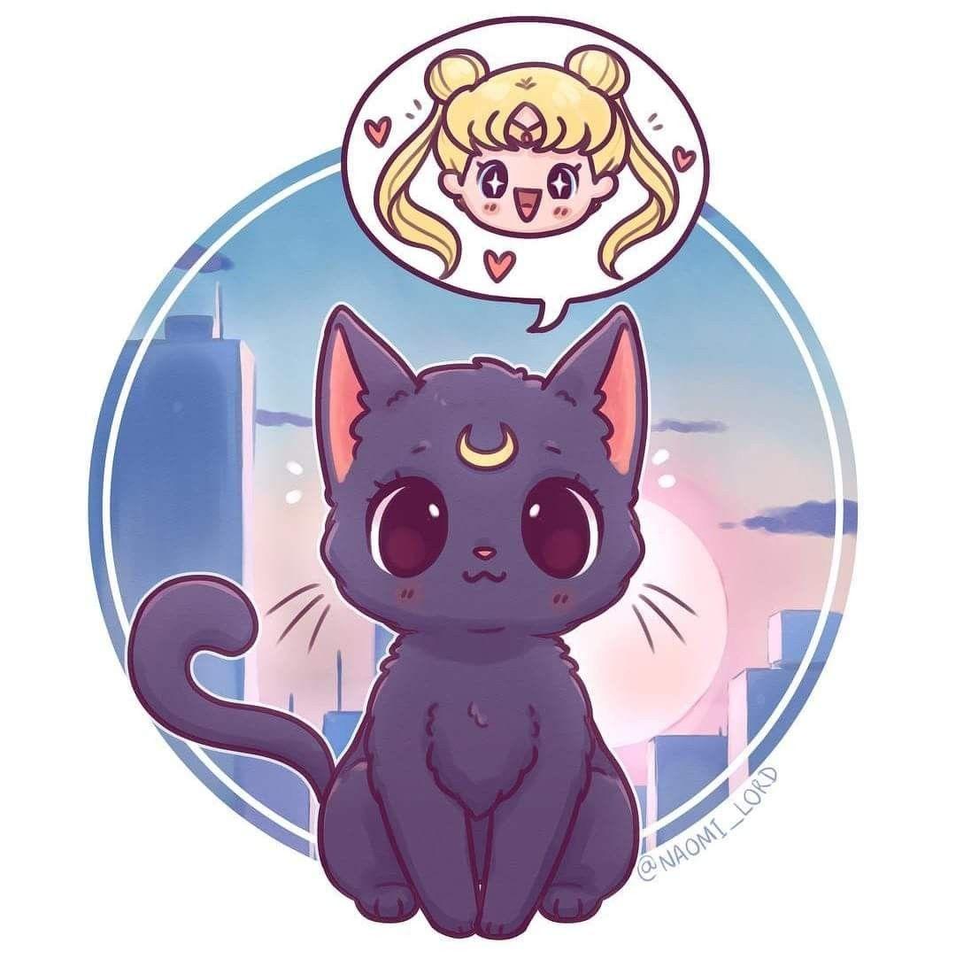 Desde Facebook Sailor Moon Cat Sailor Moon Fan Art Sailor Moon Art