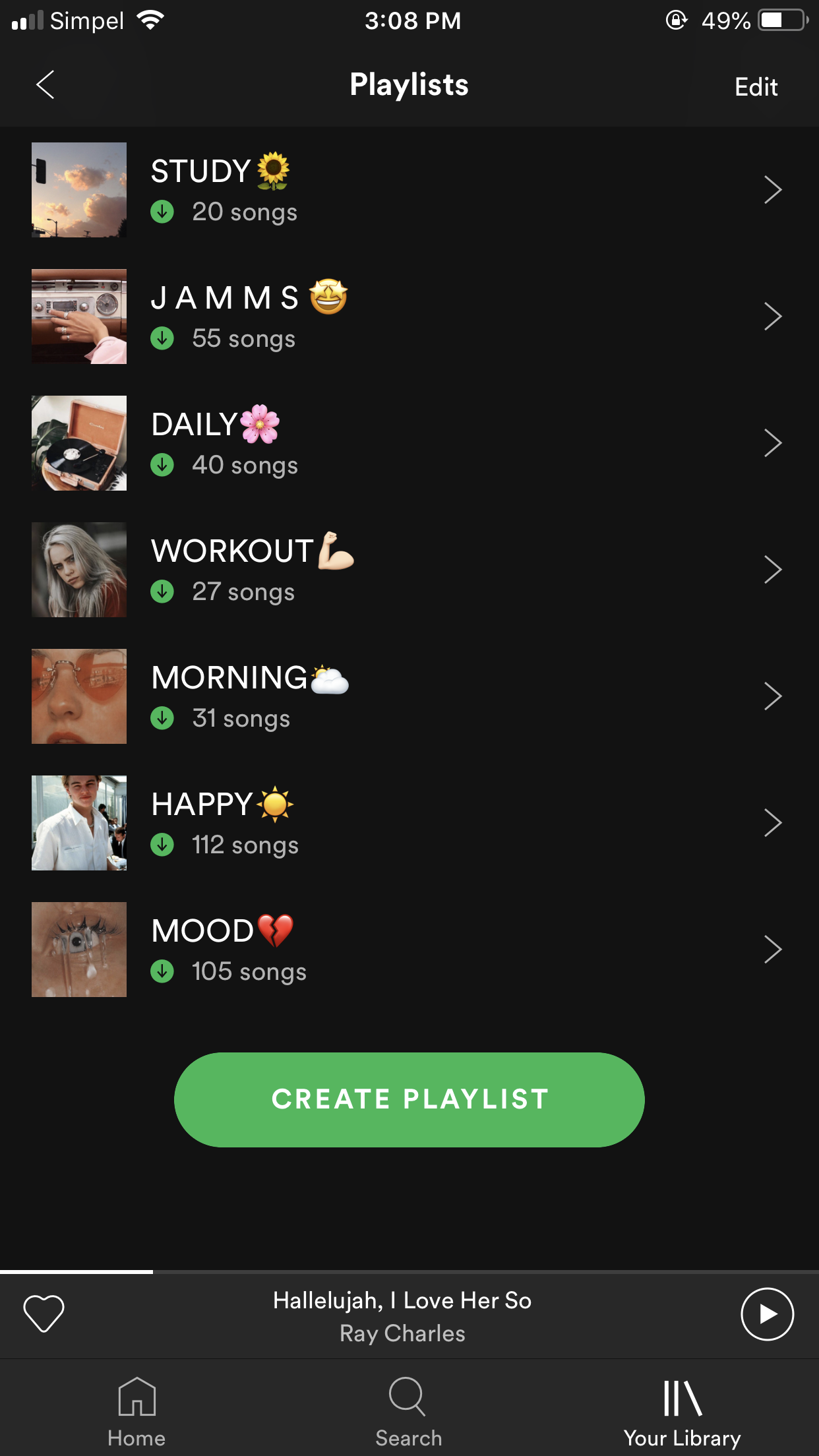 Aesthetic Cute Spotify Playlist Names