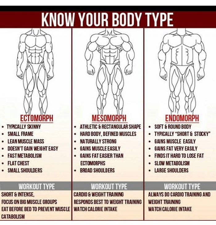 know your body type. | workout, exercises and gym, Muscles