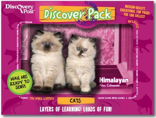 Cat Discover Pack Includes 3d Magnet Photos And More All In A