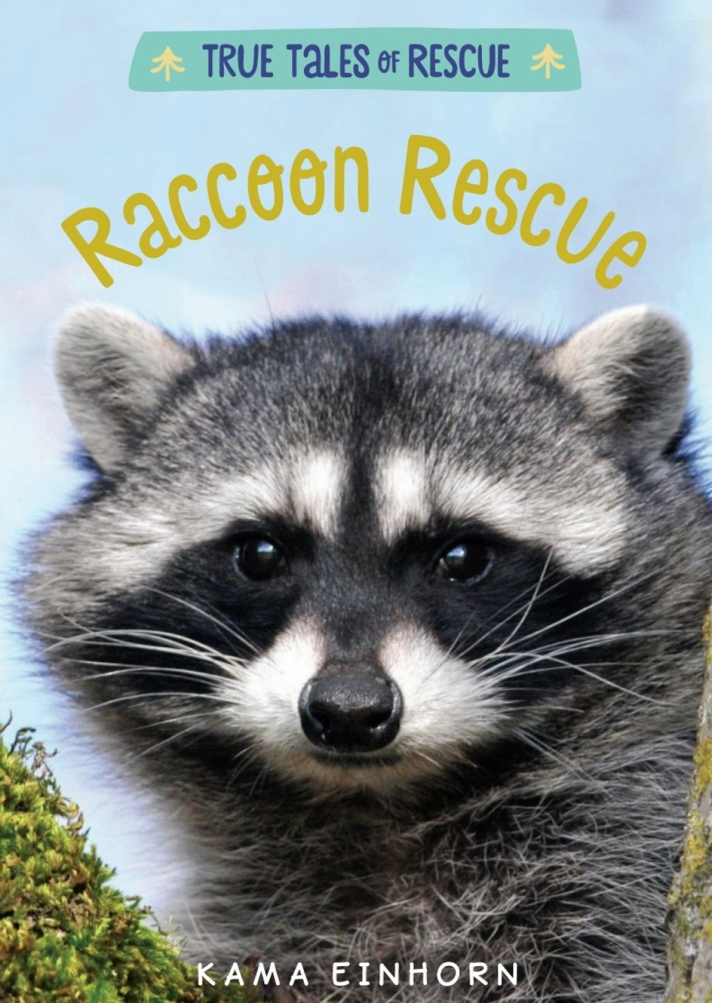 Pin By Samantha Steck On Raccoon Raccoon Rescue Animal Sanctuary