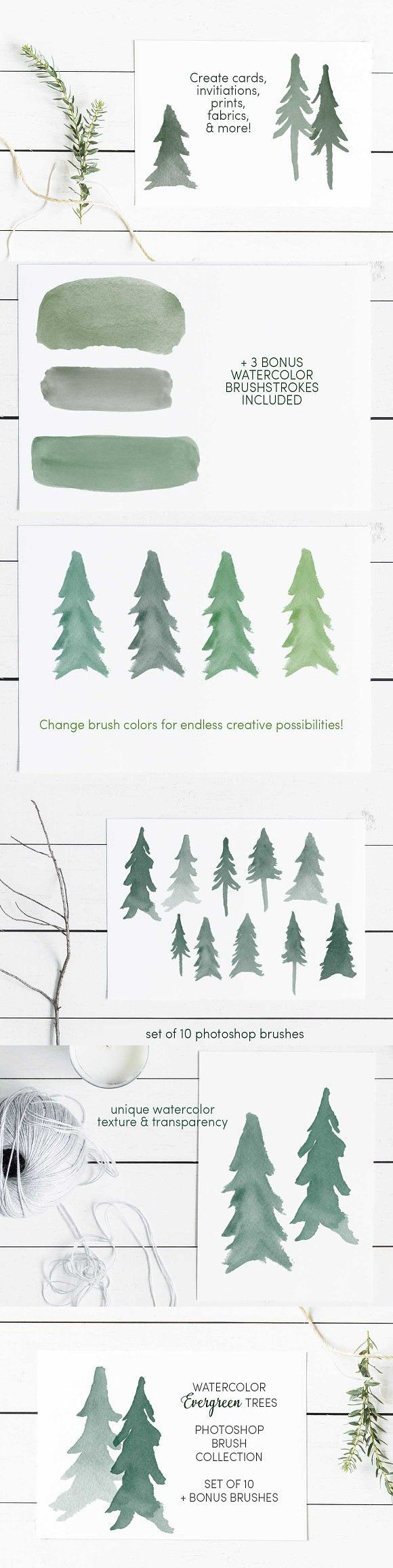 Watercolor Evergreen Trees Brush Set Photoshop Brushes In 2020 With Images Watercolor Trees Evergreen Trees Tree Design On Wall