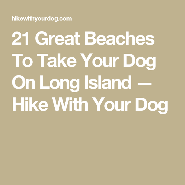 21 Great Beaches To Take Your Dog On Long Island Hike With Your Dog Your Dog Dogs Beach
