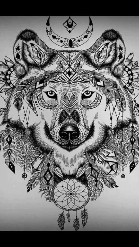a wolf in nature