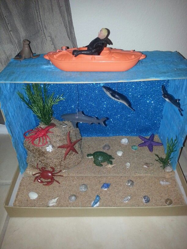 Shark diorama education pinterest dioramas shark and school shark diorama ecosystems projectsscience sciox Image collections