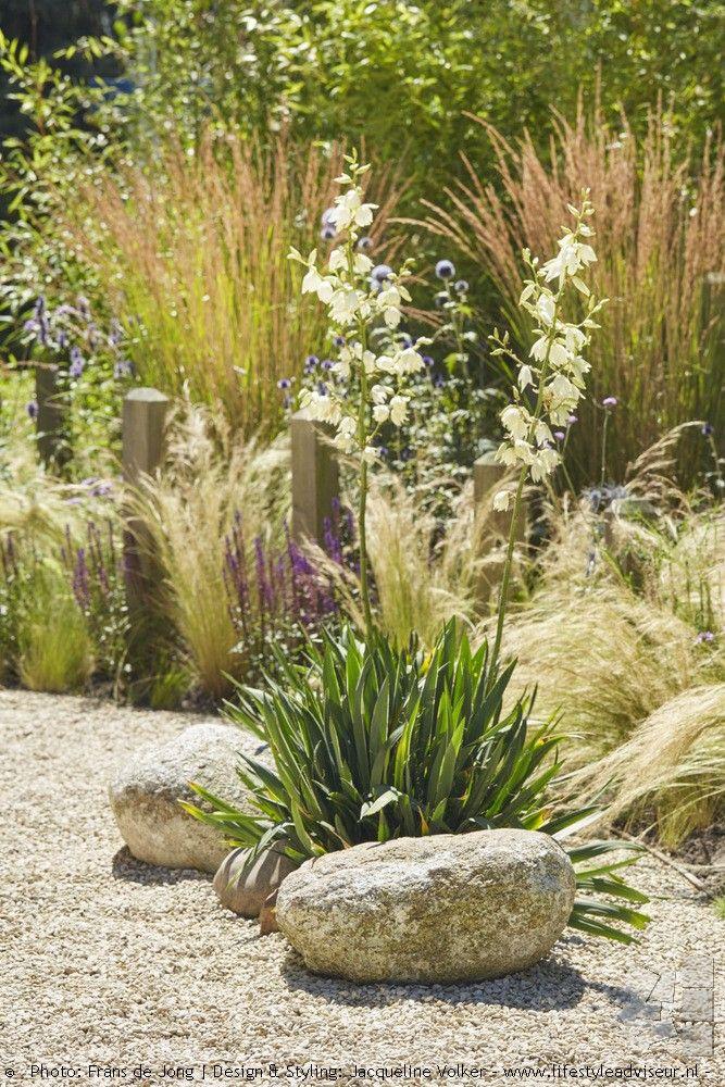 Voortuin en zij tuin in strandsfeer designed by for Small ornamental grasses for landscaping