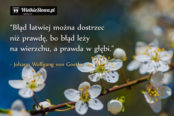 Blad Latwiej Mozna Dostrzec Quotes Words