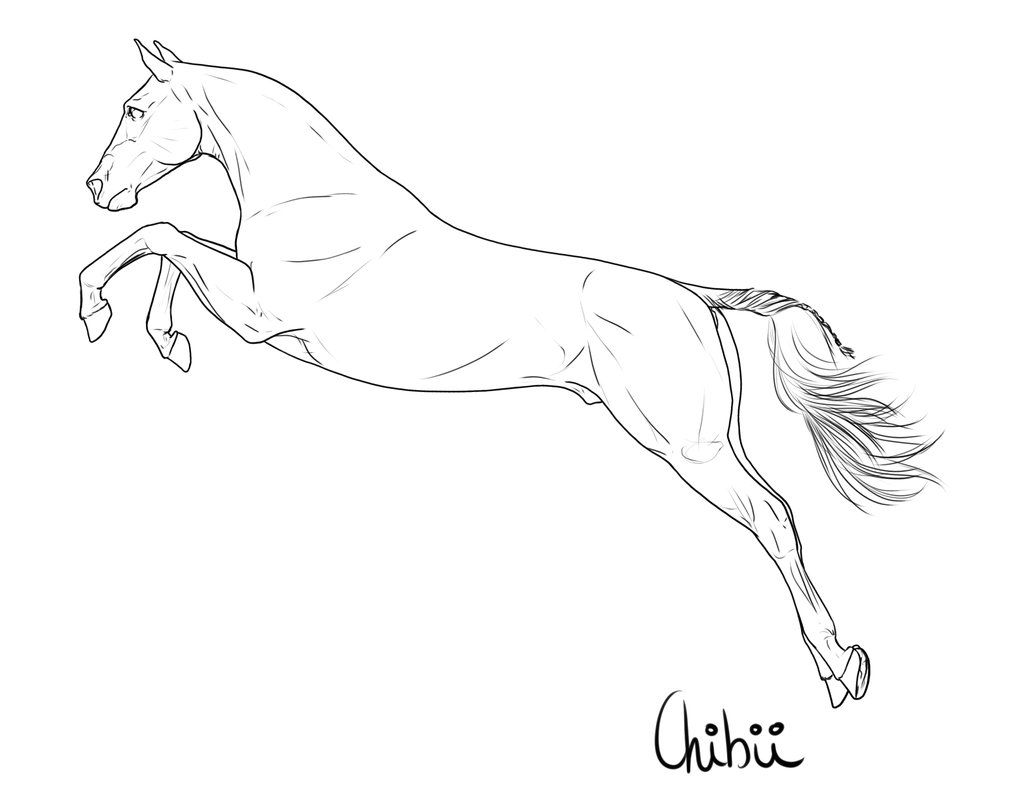FREE LINEART by BH-Stables | Horses-Anatomy-Sculpture | Pinterest ...