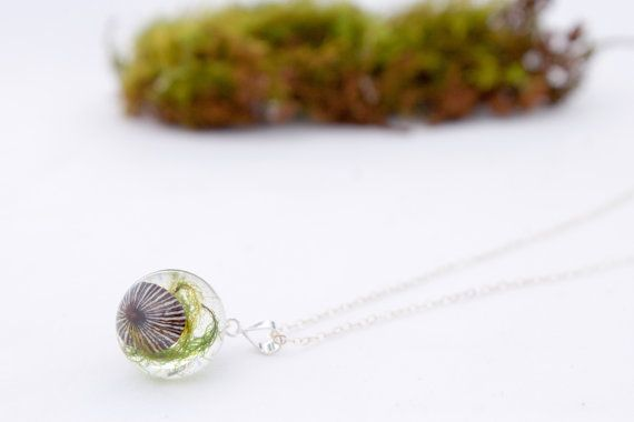 Sterling Silver Moss and Opihi Shell sphere by FloraandJetsam
