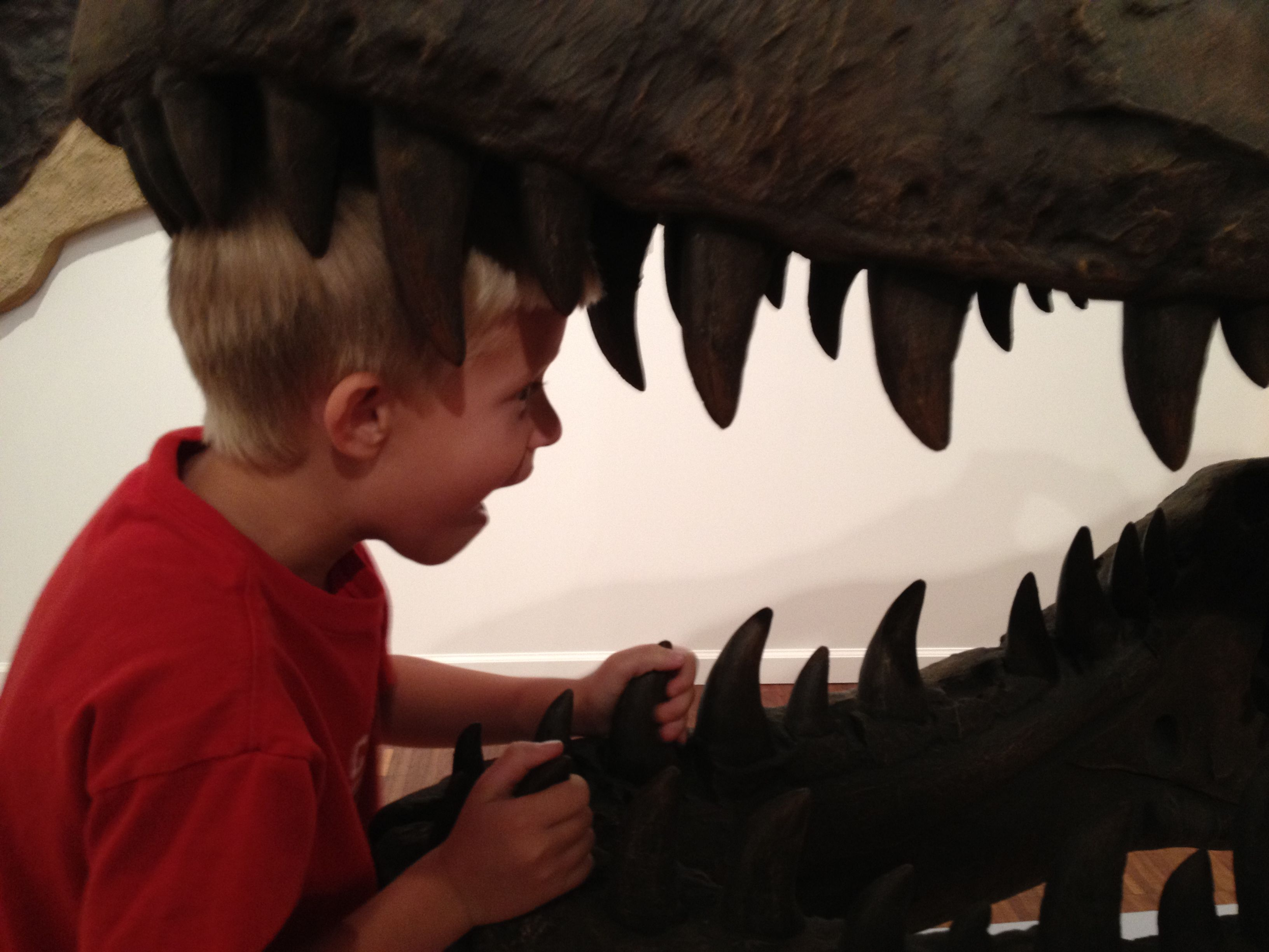 Go on a dinosaur hunt!  Find dinosaurs at the Mather's Museum (shown), in Bryan Park, at the Wonderlab and on display in Jordan Hall (at IU).