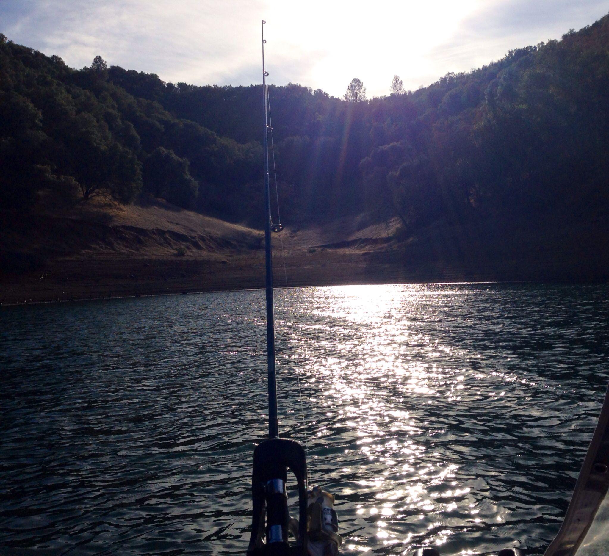 Lake berryessa winter bass fishing you can 39 t beat for Bass lake ca fishing