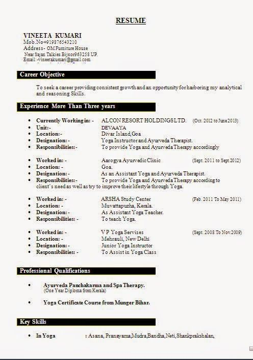executive resume examples Sample Template Example - resume example for freshers