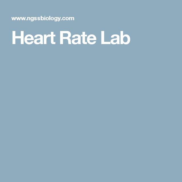 Heart Rate Lab | anatomy unit | Pinterest | Science curriculum ...