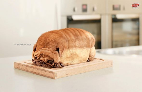 Lifebuoy: Dog You eat what you touch. Advertising Agency: Lowe Indonesia Jakarta, Indonesia Executive Creative Director: Din Sumedi