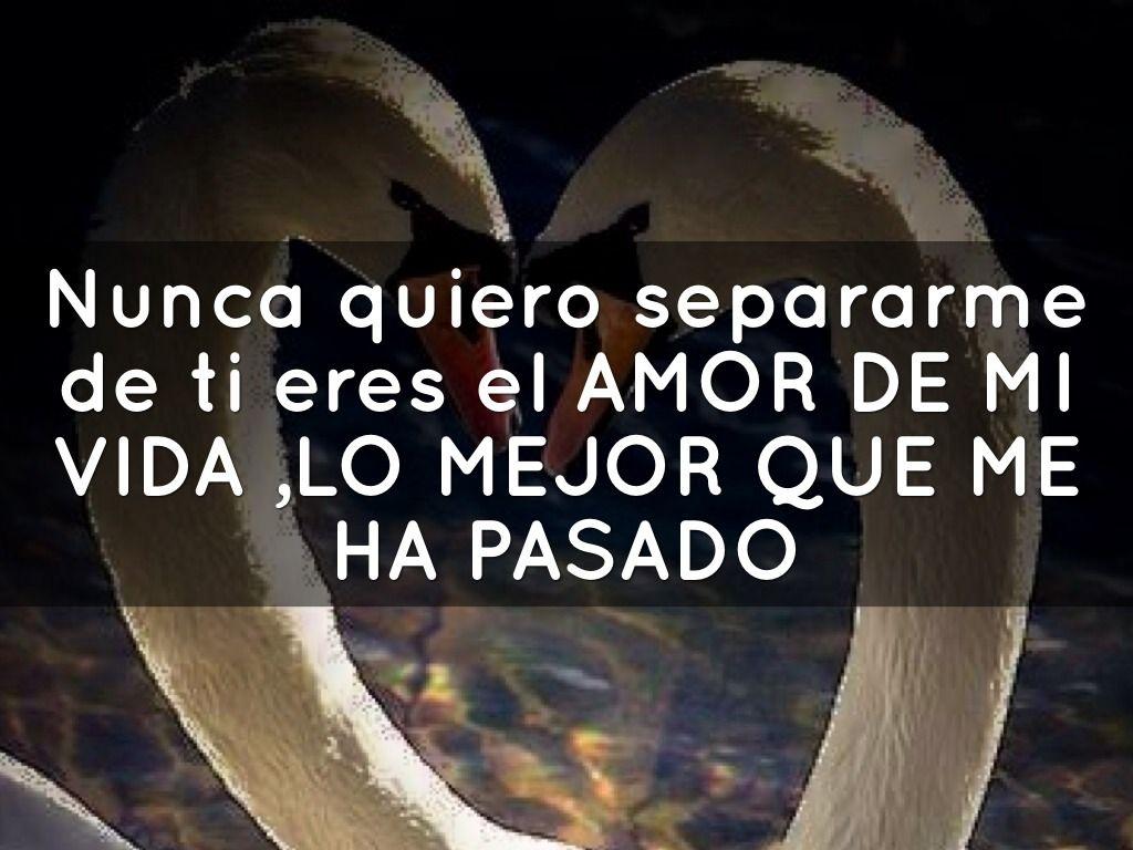 Poemas De Amor Te Amo Demaciado Te Amo Demasiado Cada Día