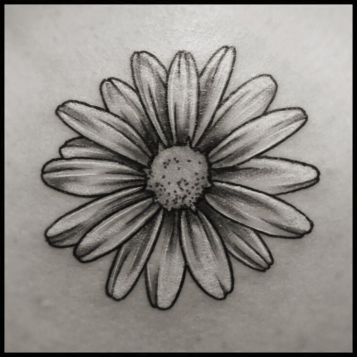 Image Result For Black And White Daisy Tattoo Daisy Tattoo Designs Daisy Tattoo Tattoos