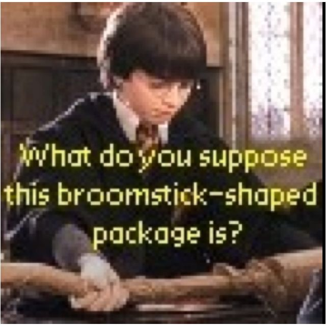 what do you suppose this broom-shaped package is? haha hmmm good question...