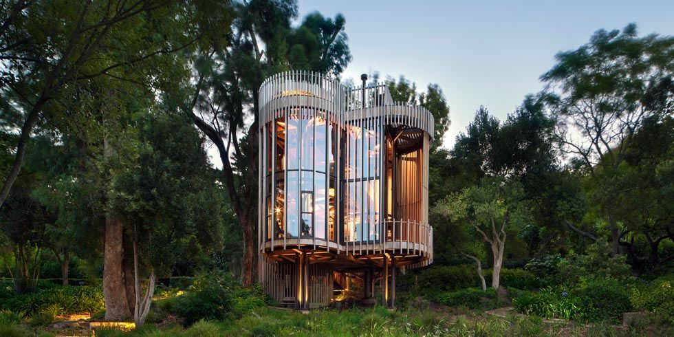 This Treehouse in Cape Town, South Africa Is a Sight to Behold