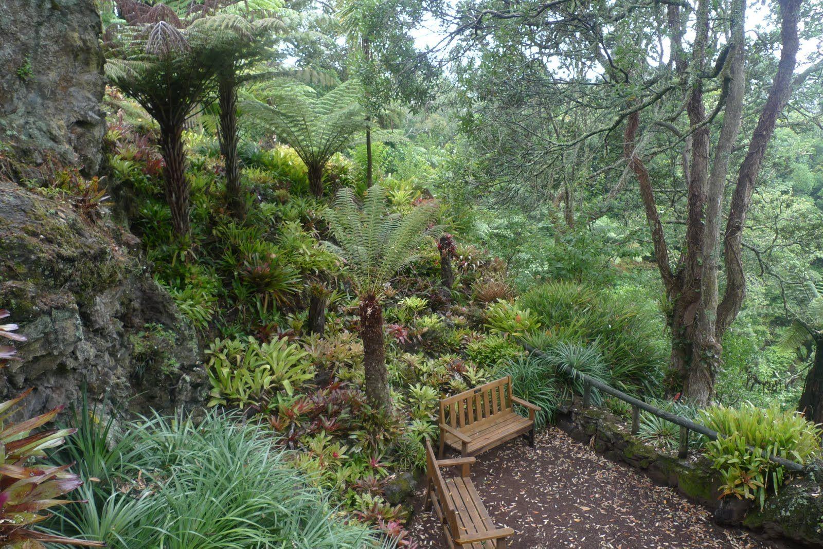 A NEW ZEALAND GARDEN | A Yorkshire Garden Designer ...