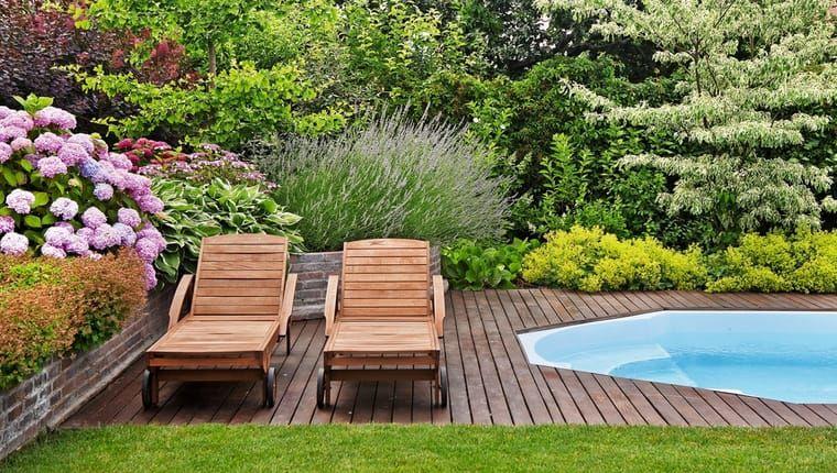 Hitparáda živých plotov: Zelená hranica má v záhrade množstvo predností