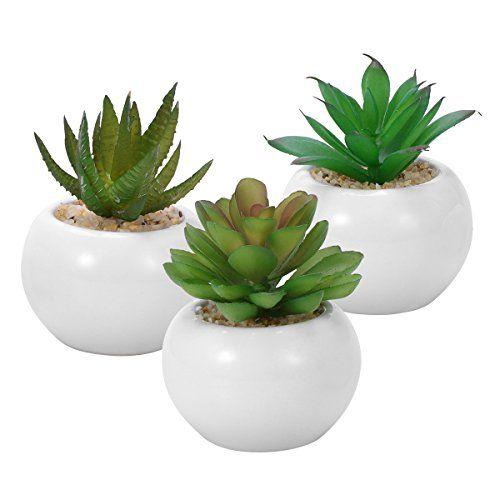 Winomo 3pcs Succulentes Artificielles Decoratives Mini Pot De