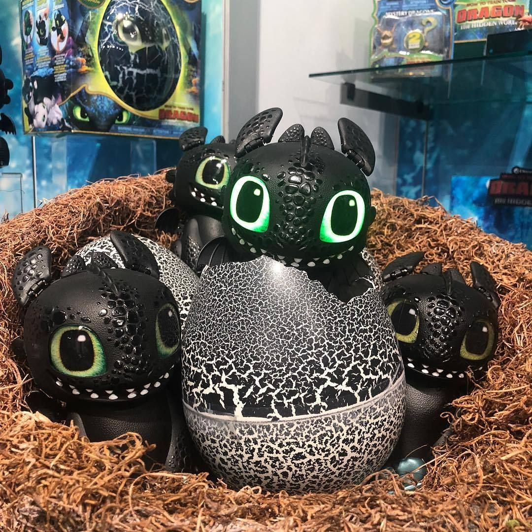 How to train your dragon hatching egg venus best deal