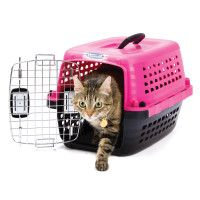 Cat Carriers Kennels Crates For Cats Petsmart Pet Carriers