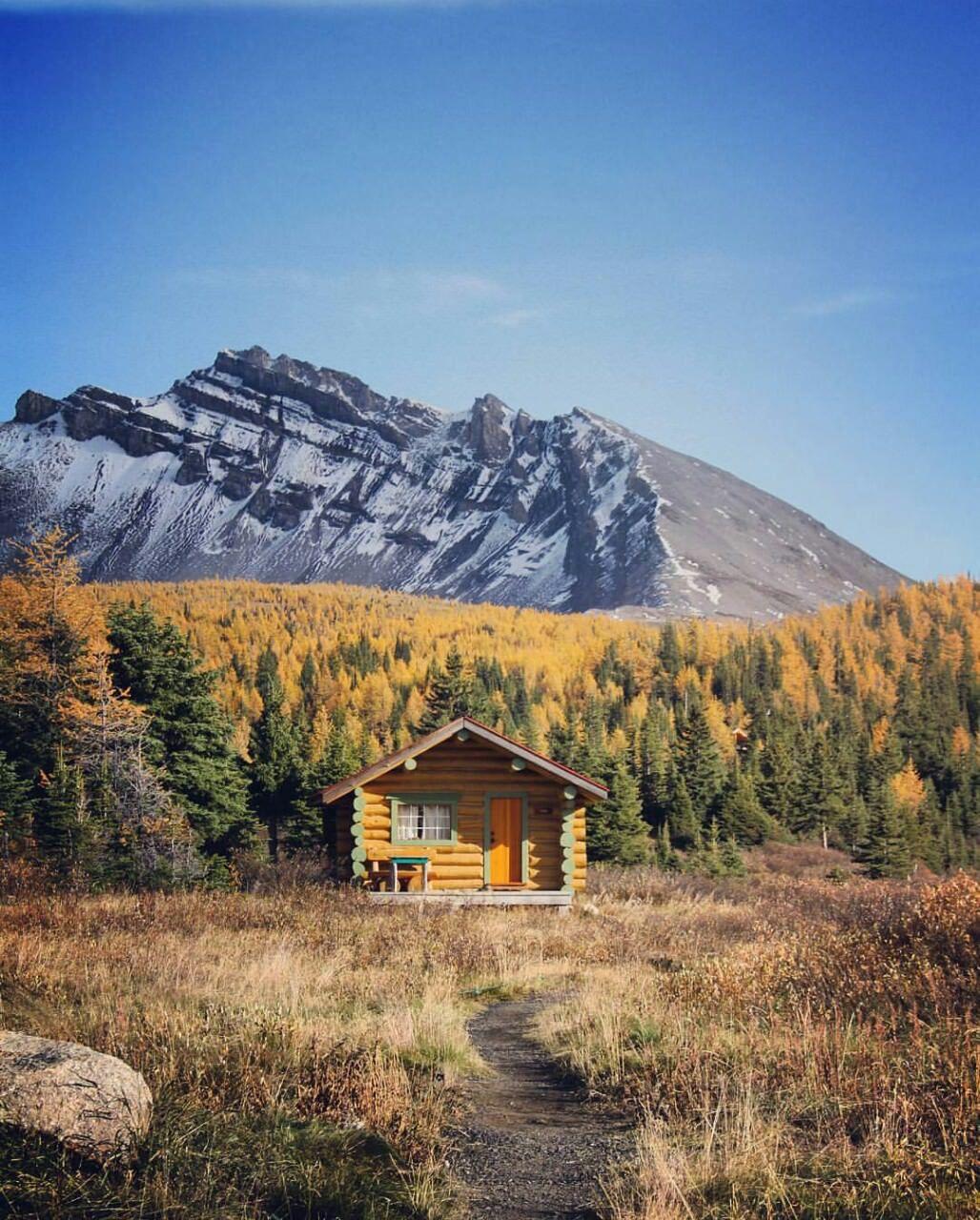 Cozy cabin in banff national park alberta canada