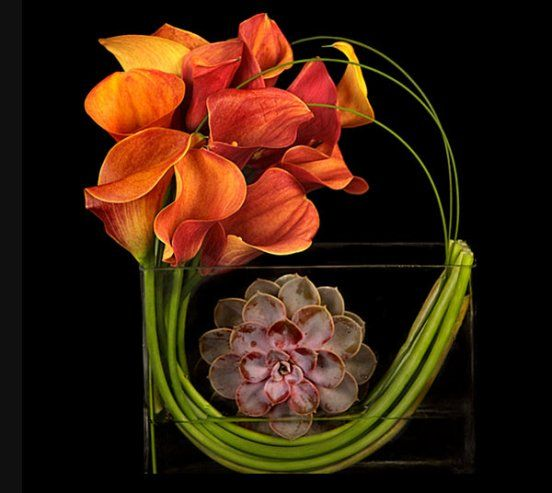 Modern Flower Arrangement-don't like the succulent but like the rest