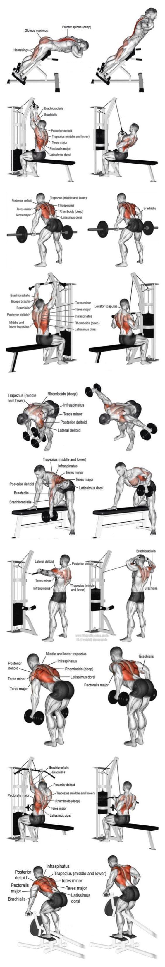 Rutina de espalda en el gimnasio