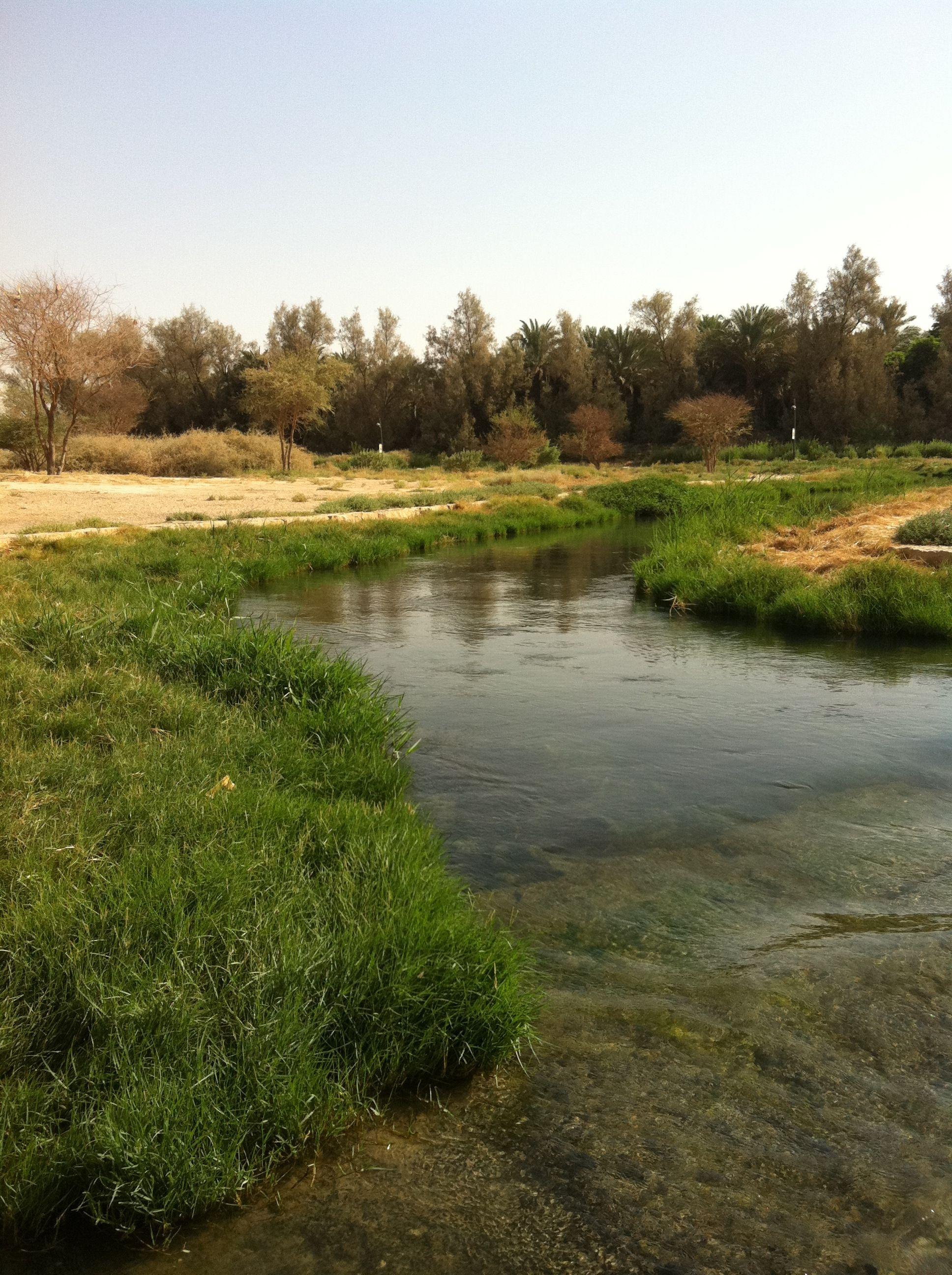 وادي حنيفة Desert Landscaping Saudi Arabia Landscape