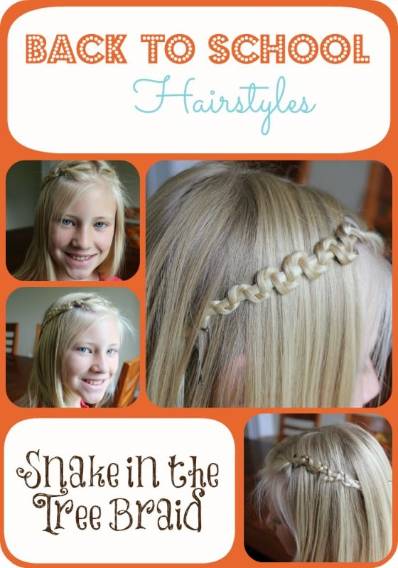 Back to School Hairstyles - Snake in the Tree Braid | Back to School ...