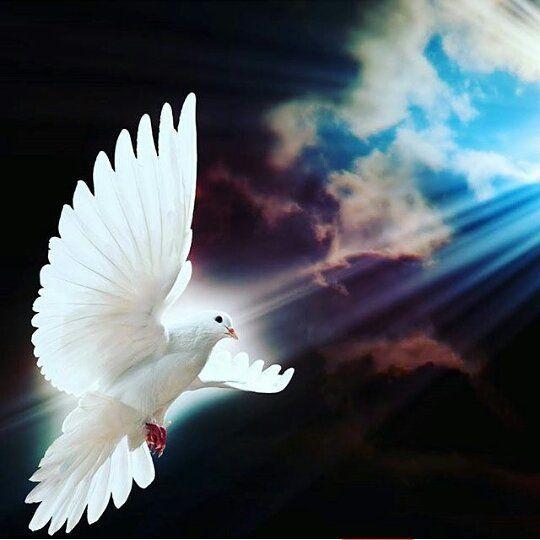 Quien es para mi el Espíritu Santo? /  Espíritu Santo  inspirarme hoy en lo que debo decir lo que debo pensar y lo que debo callar -  Lectura del santo evangelio según san Juan (1526164a): /  En aquel tiempo dijo Jesús a sus discípulos: Cuando venga el Defensor que os enviaré desde el Padre el Espíritu de la verdad que procede del Padre él dará testimonio de mí; y también vosotros daréis testimonio porque desde el principio estáis conmigo. Os he hablado de esto para que no tambaleéis. Os…