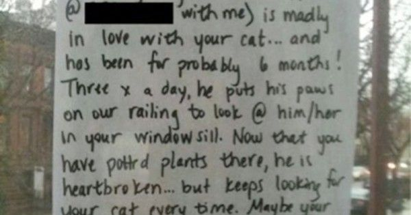 Her Dog Was Heartbroken, So She Writes Her Neighbor A Note. This Is So Sweet!