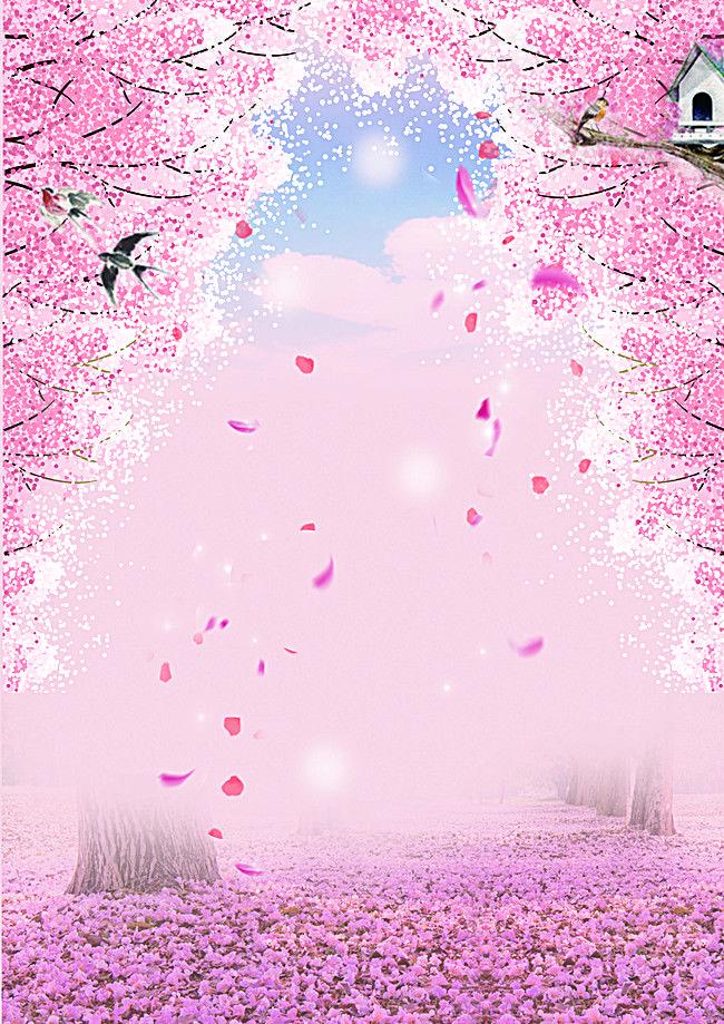 Merah Jambu, Romantis, Bunga Ceri Gambar Latar Belakang, Romantis Merah Muda Bunga Ceri Di Poster Latar Belakang Foto PNG dan Vektor