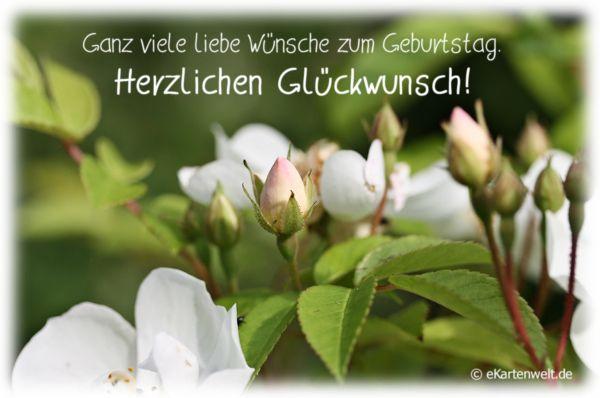 Gluckwunschkarte Geburtstag Liebe Grusse In Grun