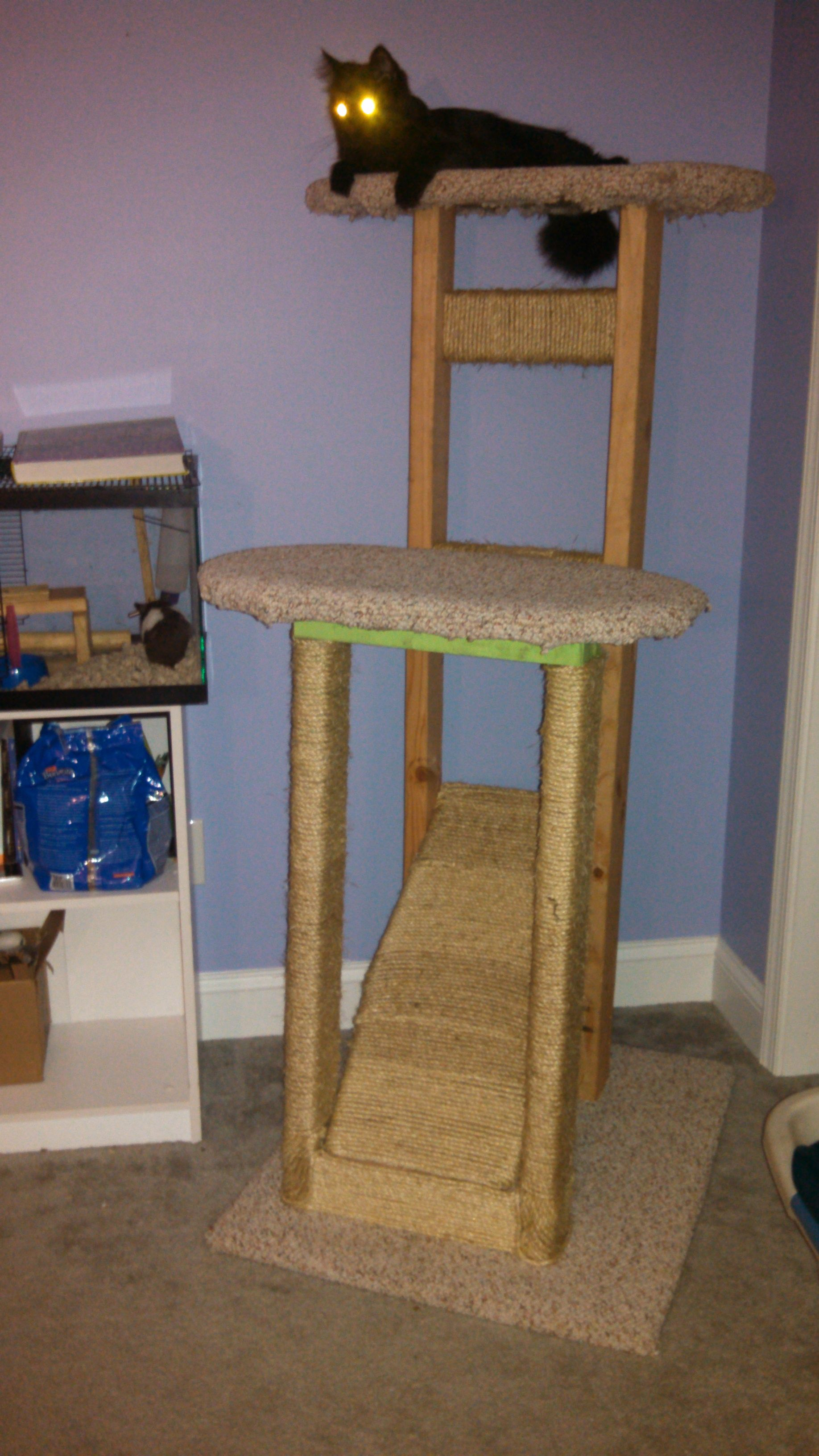 Build your own cat tree plans homemade cat tree cattrees for Cat climber plans