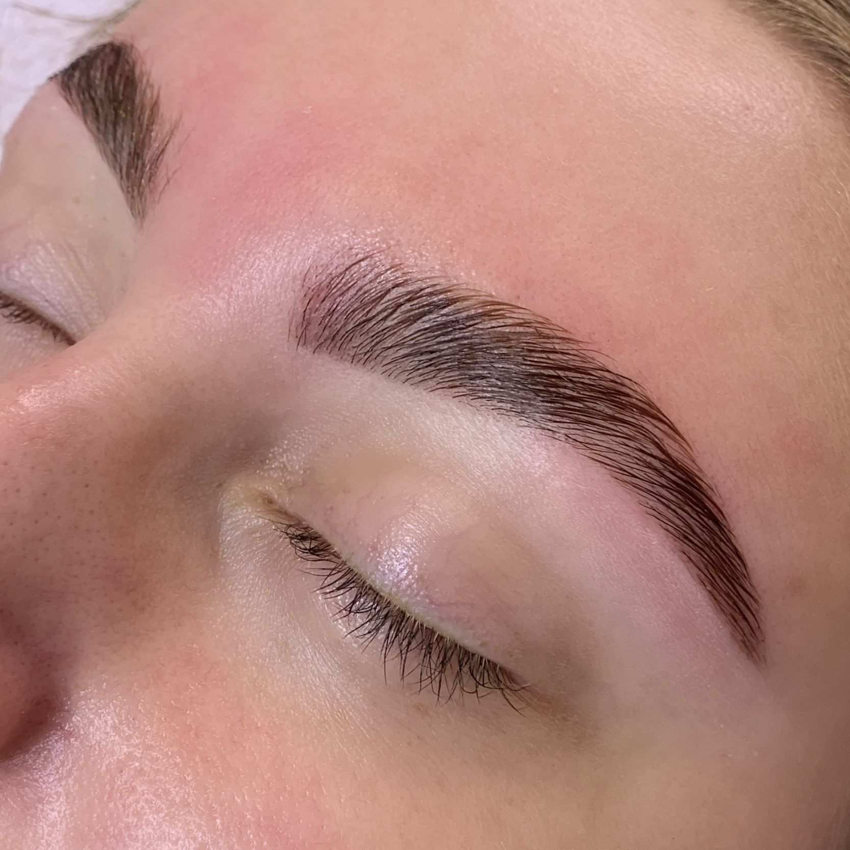 Eyebrow Lamination in 2020 Brows, Eyebrows goals, Eyebrows