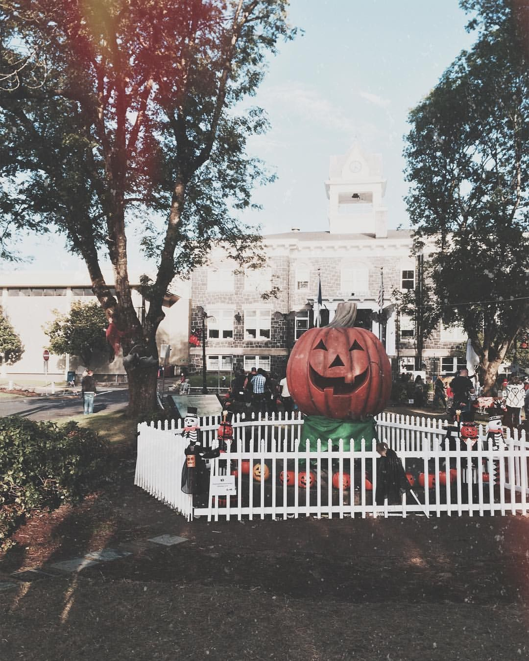 Pin by McKenna Buck on HALLOWEEN Halloween town, Vintage