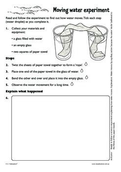 Walking Water Experiment Worksheet