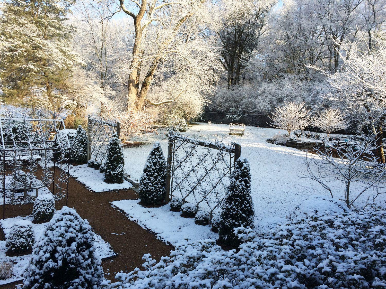 belgian fence in winter gardening general pinterest trees
