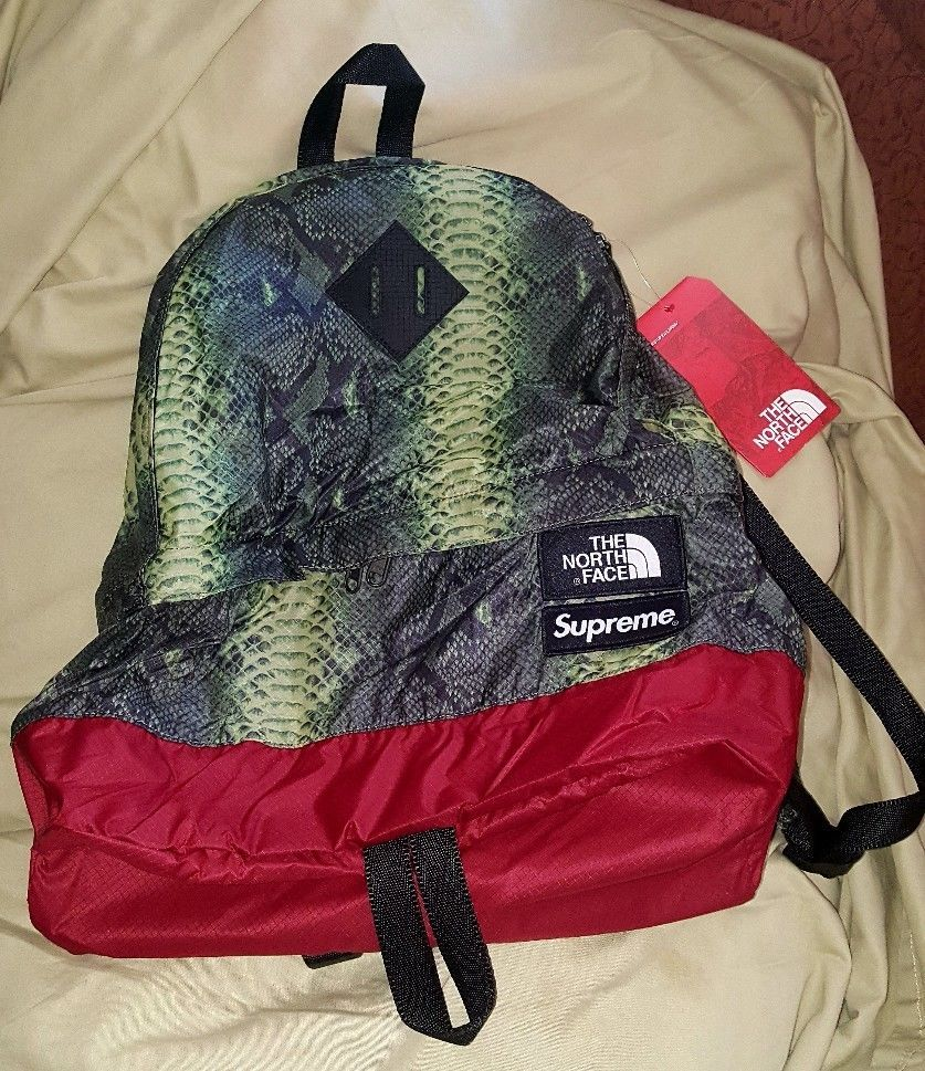 5fd579512 Supreme The North Face TNF Snakeskin Day Pack Backpack Green SS18 In ...