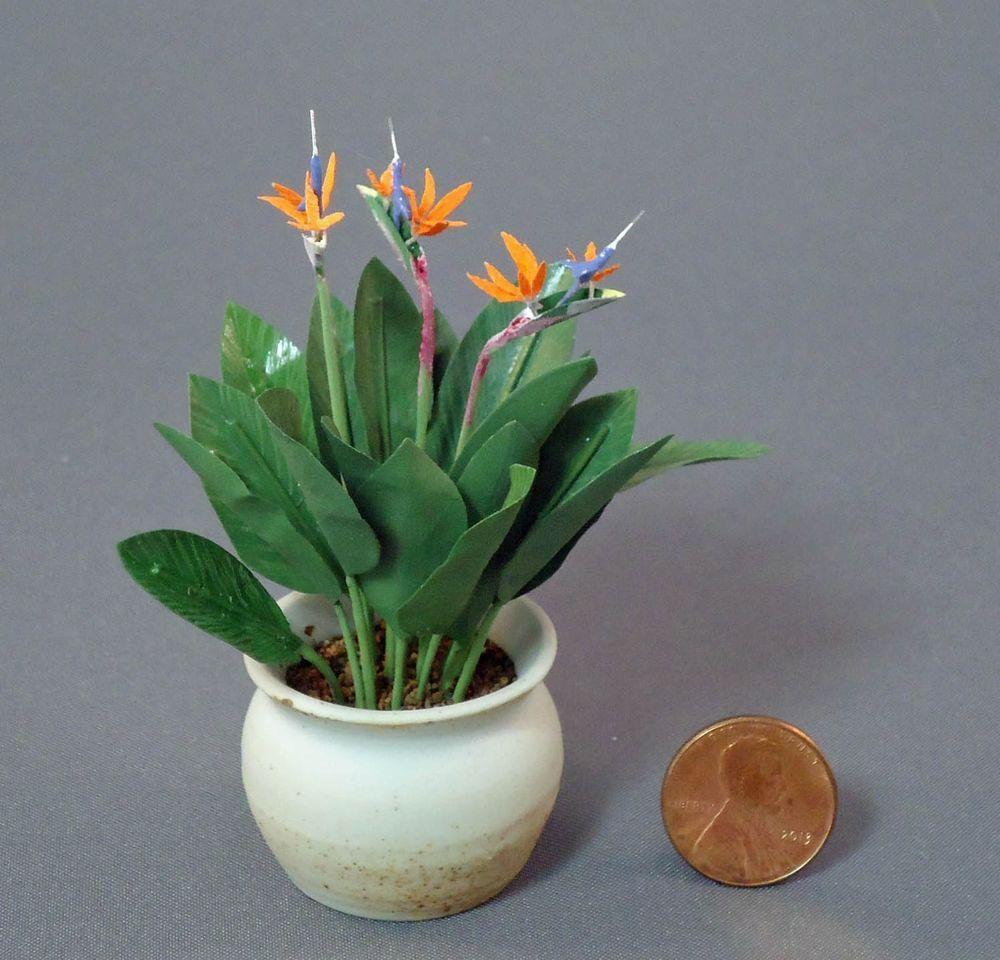 P2 Garden 1:12 Scale  Bird of paradise Flower Dolls House Miniature Flower