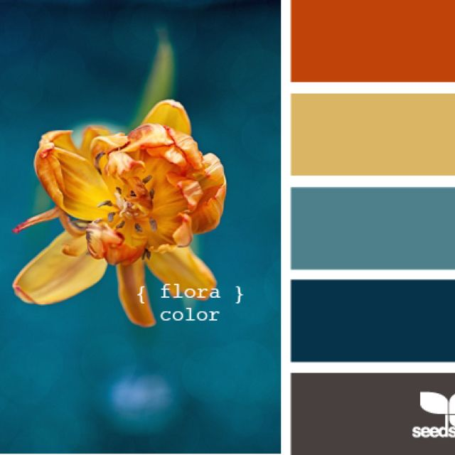Color palette Livingroom in 2018 Pinterest Color Schemes