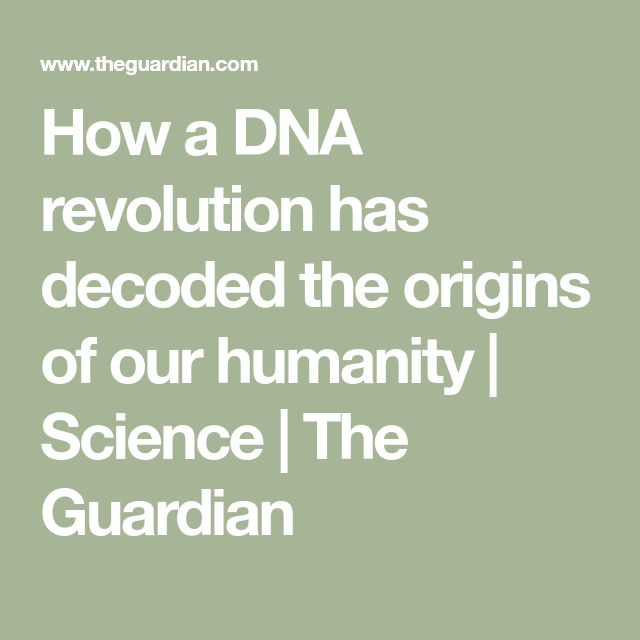 How a DNA revolution has decoded the origins of our humanity   Science   The Guardian