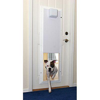 Plexidor Performance Electronic Pet Door Wall Mount Color White