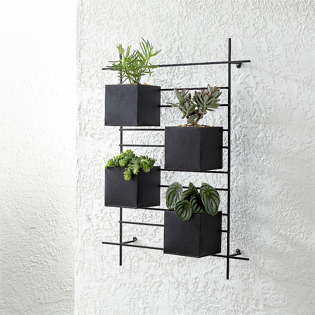 4 Box Wall Mounted Planter Reviews Crate And Barrel Wall Planters Outdoor Wall Mounted Planters Metal Wall Planters