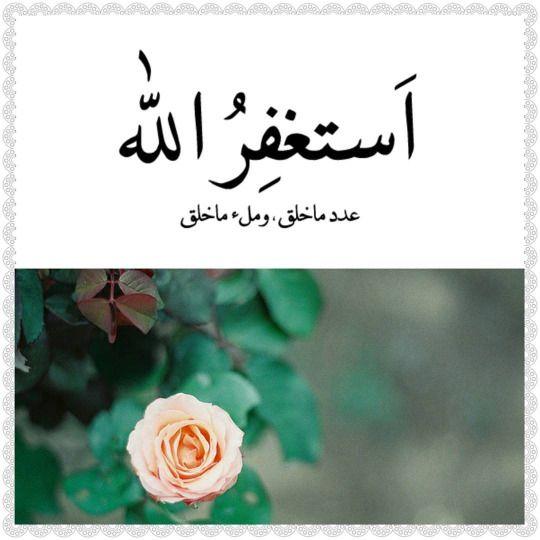 وبالأسحار هم يستغفرون يشرع في نهاية العبادات أن يستغفر الإنسان ربه مما قد يكون فيها من خلل تفسير سورة الذاريات ١٢٥ Flowers Rose Plants