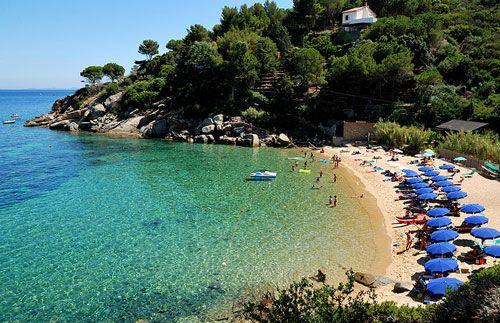 LOOK AT THAT WATER!!!! Italian beaches Le Caldane, Isola